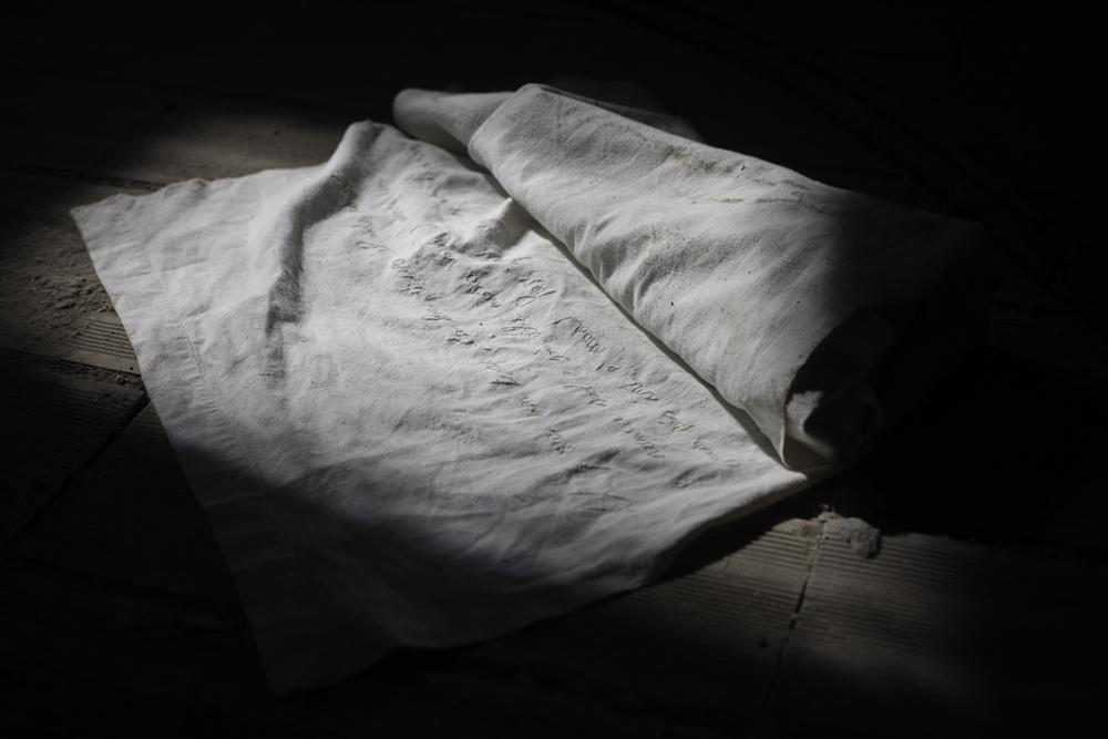 Silvia Bigi, Documento 1 (Il ritrovamento), 2017, dalla serie L'albero del latte