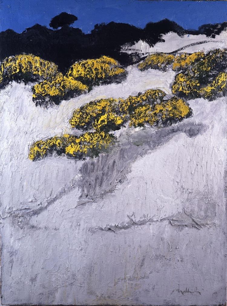Carlo Mattioli, Le ginestre, 1979, olio su tela, cm 100x74