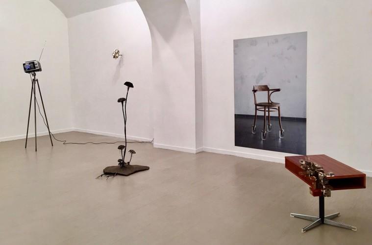 Hidden Beauty, 2017, Installation view, z2o Sara Zanin Gallery, Roma