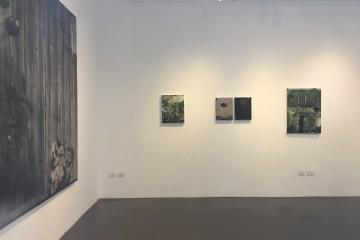 Mirko Baricchi. Pangea, veduta della mostra, Galleria Il Vicolo, Milano