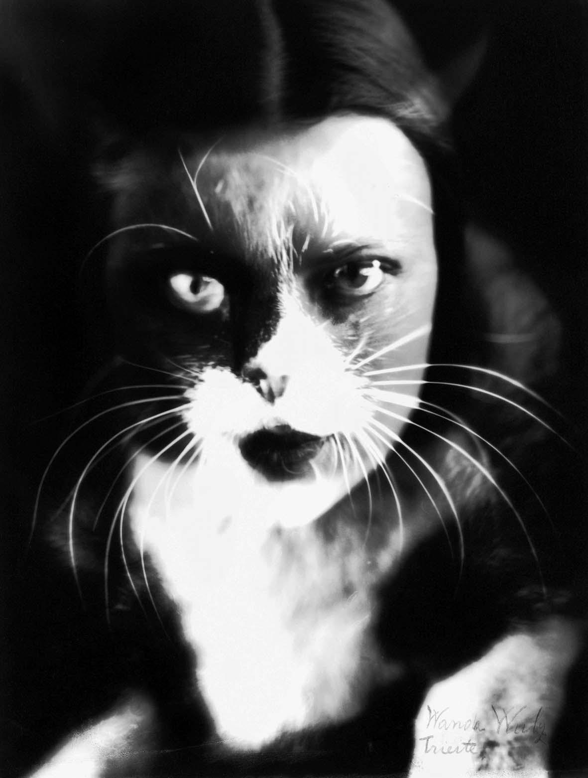 Wanda Wulz, Io + gatto, sovrimpressione del volto di Wanda Wulz con l'immagine del proprio gatto, 1932, Archivi Alinari Firenze