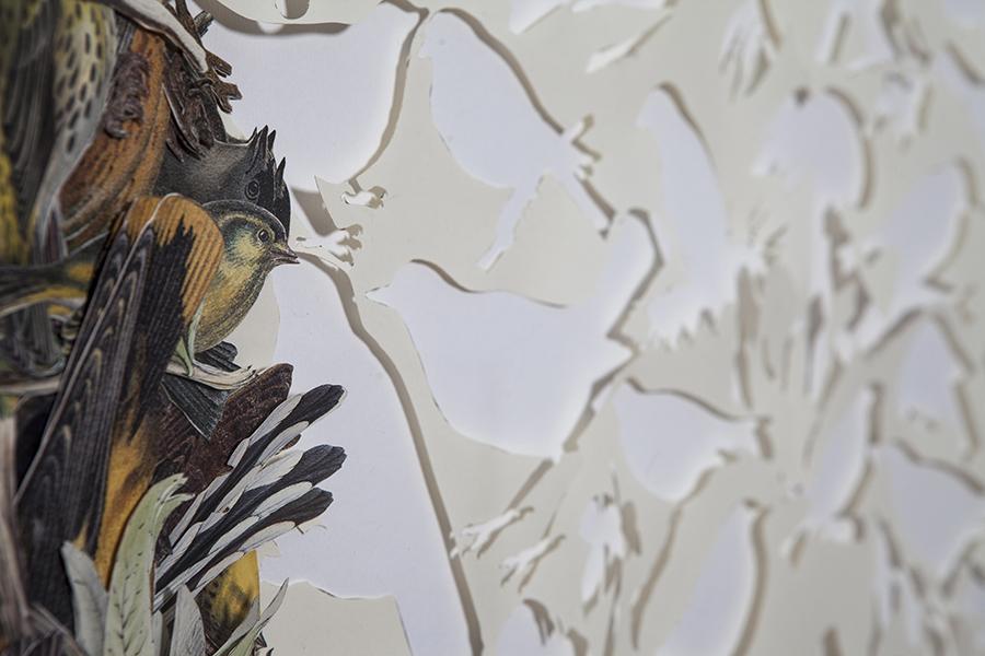 Gianluca Quaglia, VOLATILI, intagli su carta, collage, 100x70cm, 2015